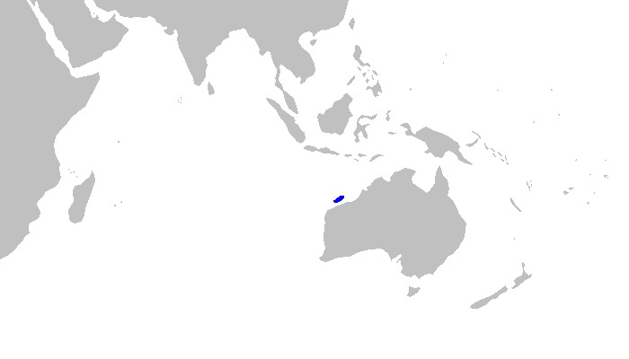 Map of Sicklefin Hound Shark