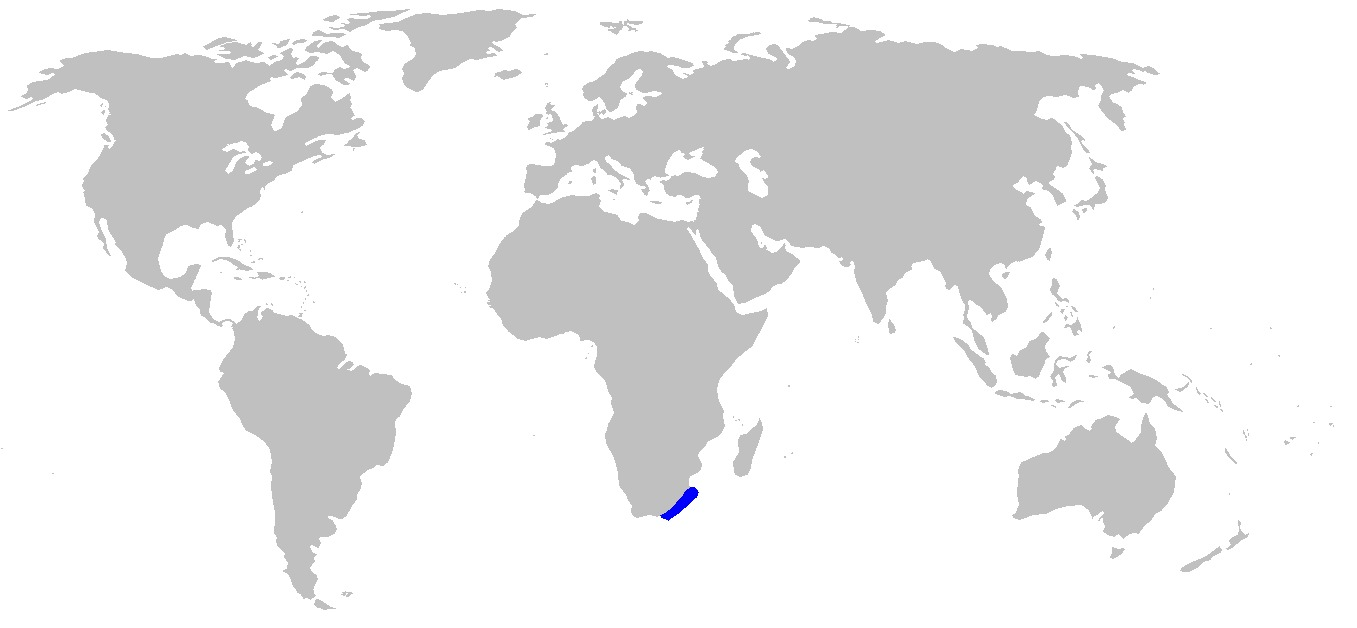 Map of Flapnose Houndshark