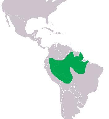"<span class=""translation_missing"" title=""translation missing: en.medium.untitled.map_image_of, page_name: Black Caiman"">Map Image Of</span>"