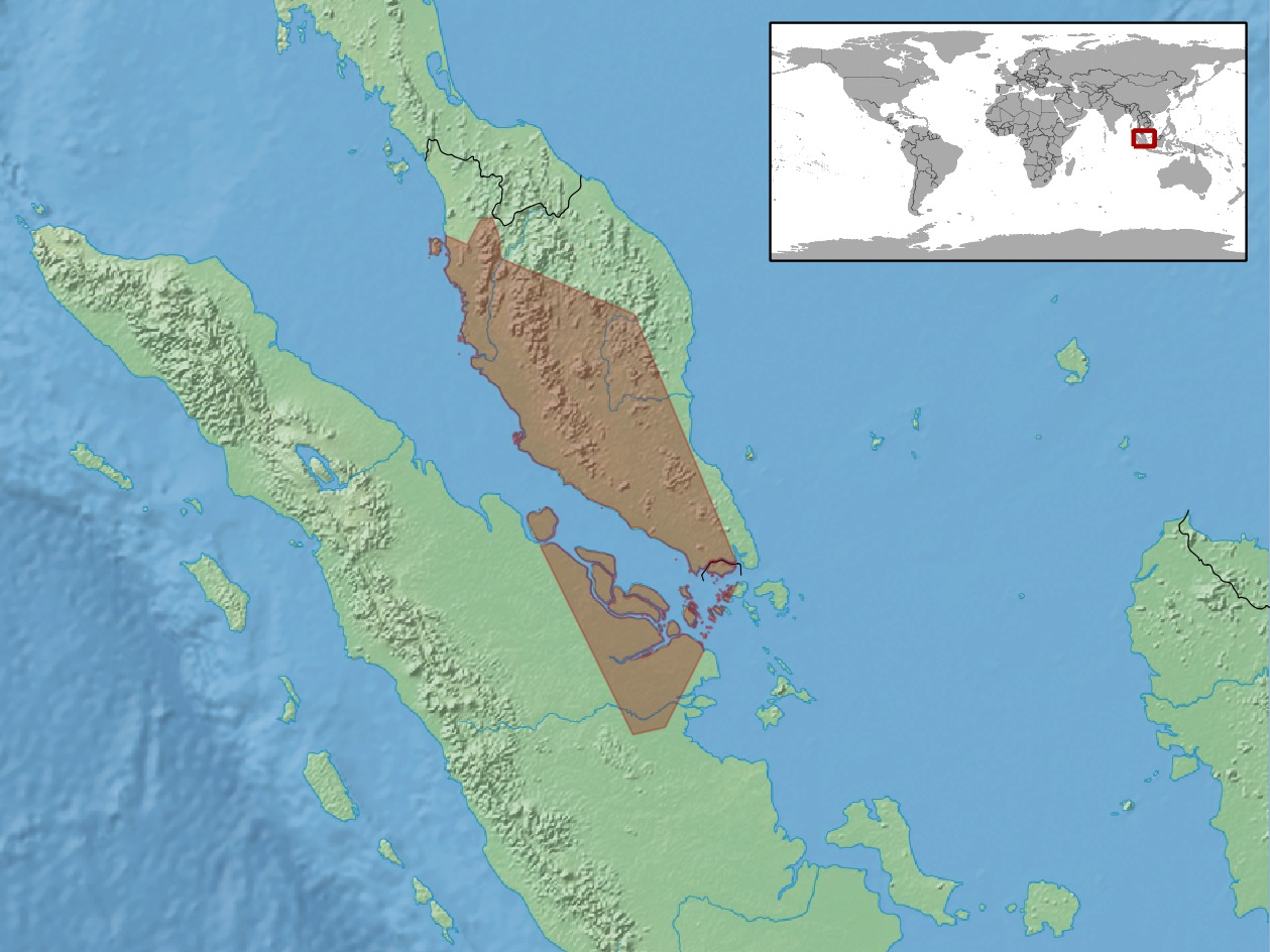 Map of White-bellied Reed Snake