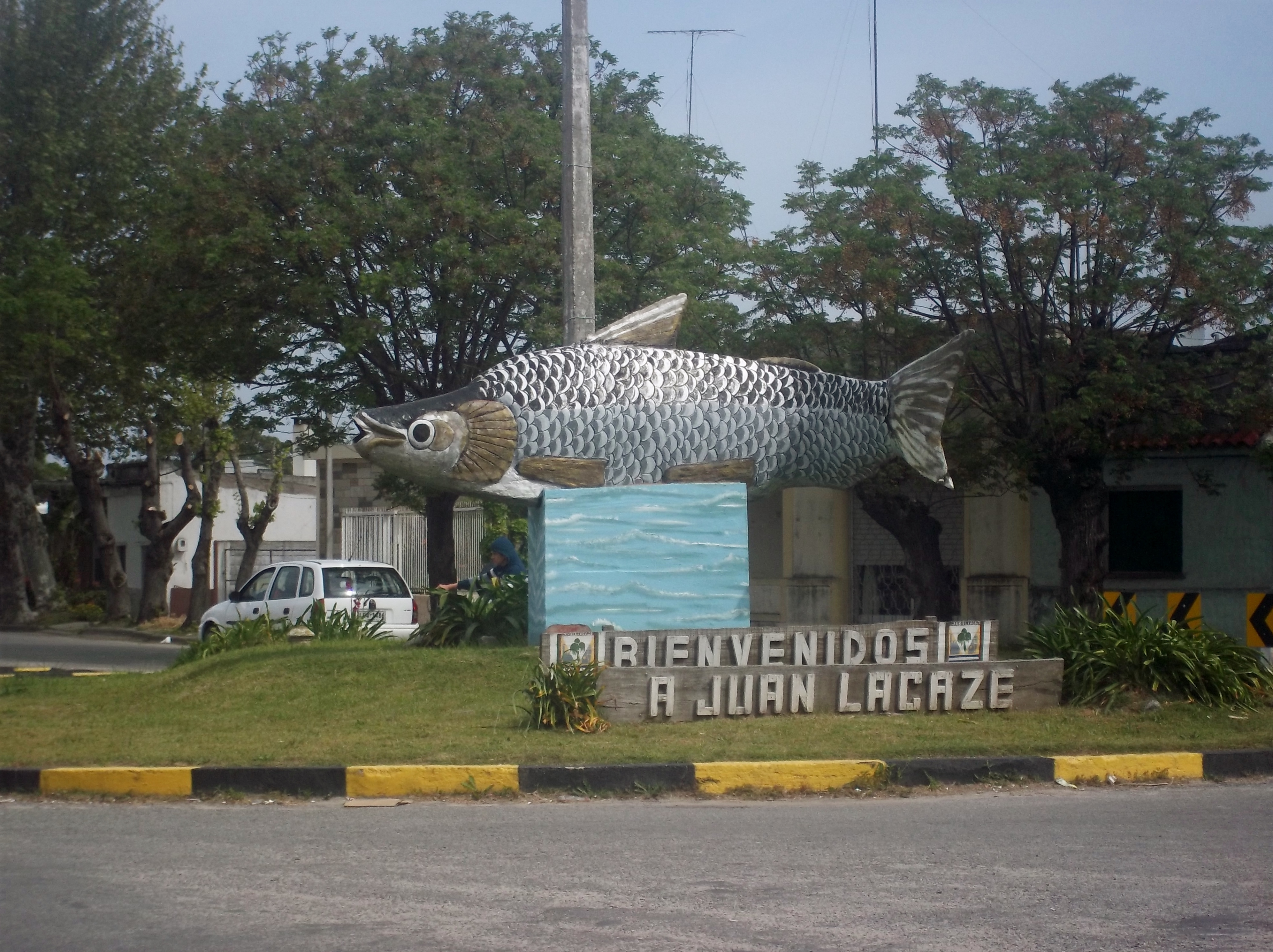 Image of Curimbata