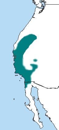 Map of Nuttall's Woodpecker