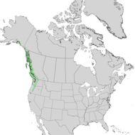 Map of Nootka Cypress
