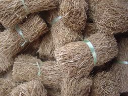 Image of False beardgrass
