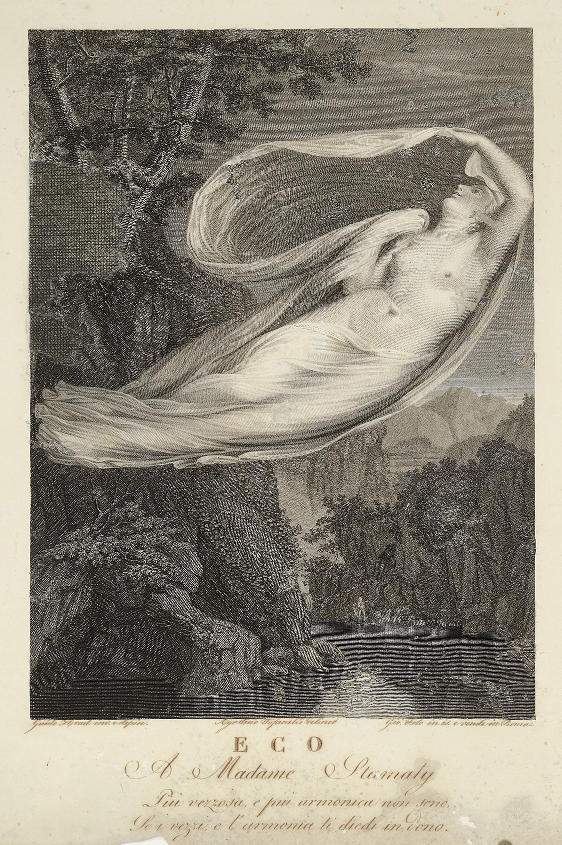 Image of Echo Selys 1853