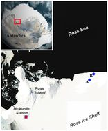 Map of Andrill Anemone