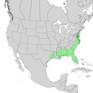 Map of Swamp Bay