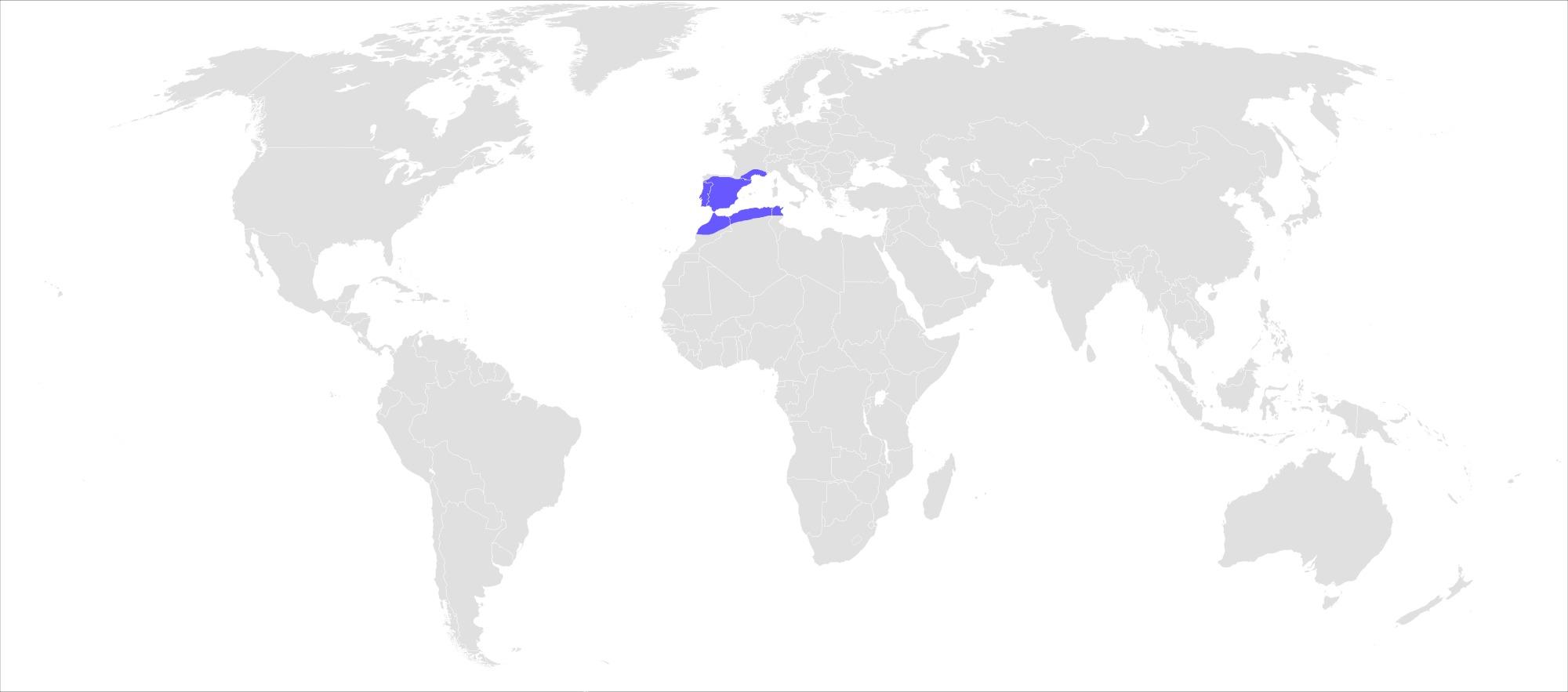 "<span class=""translation_missing"" title=""translation missing: en.medium.untitled.map_image_of, page_name: &lt;i&gt;Zerynthia rumina&lt;/i&gt; (Linnaeus 1758)"">Map Image Of</span>"