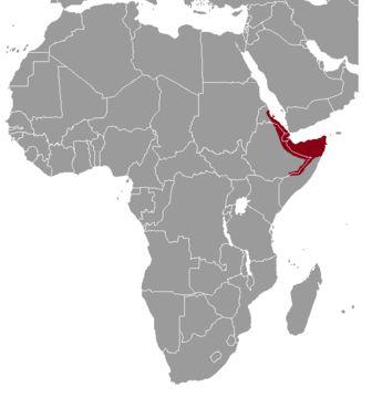 Map of gundis