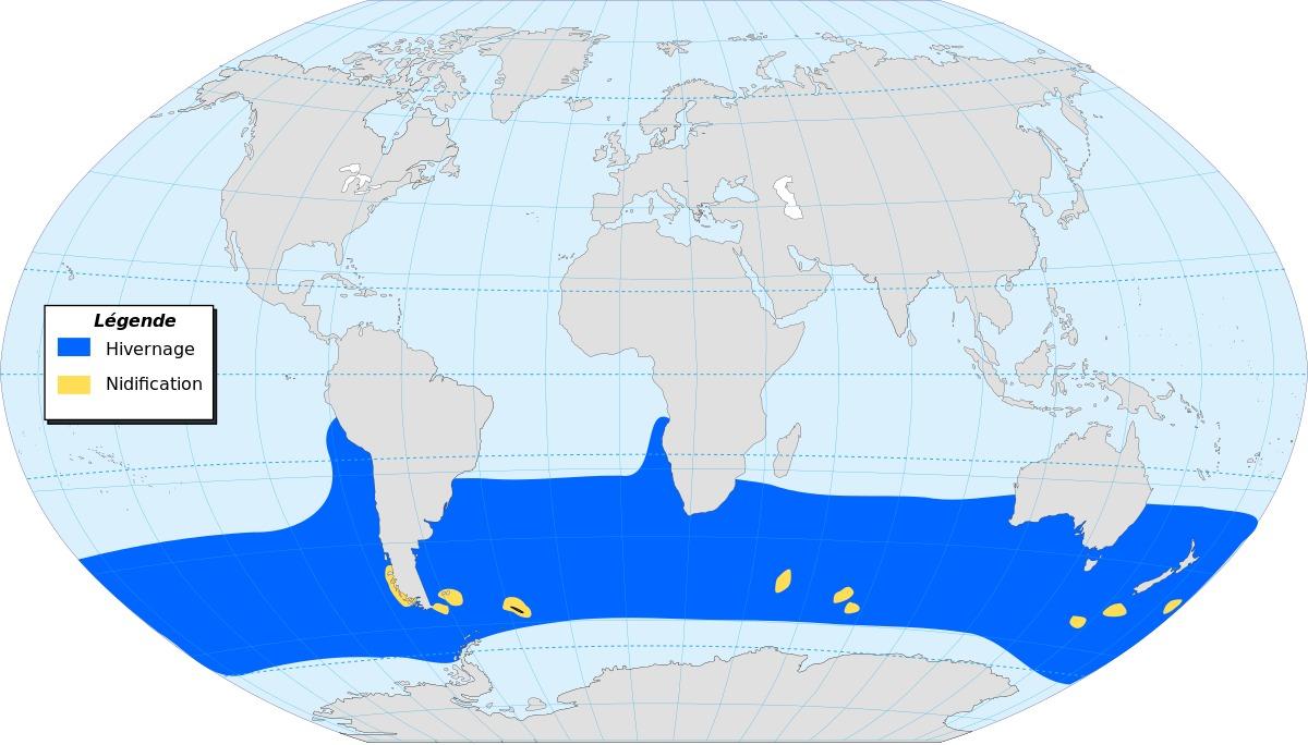 "<span class=""translation_missing"" title=""translation missing: en.medium.untitled.map_image_of, page_name: albatrosses"">Map Image Of</span>"
