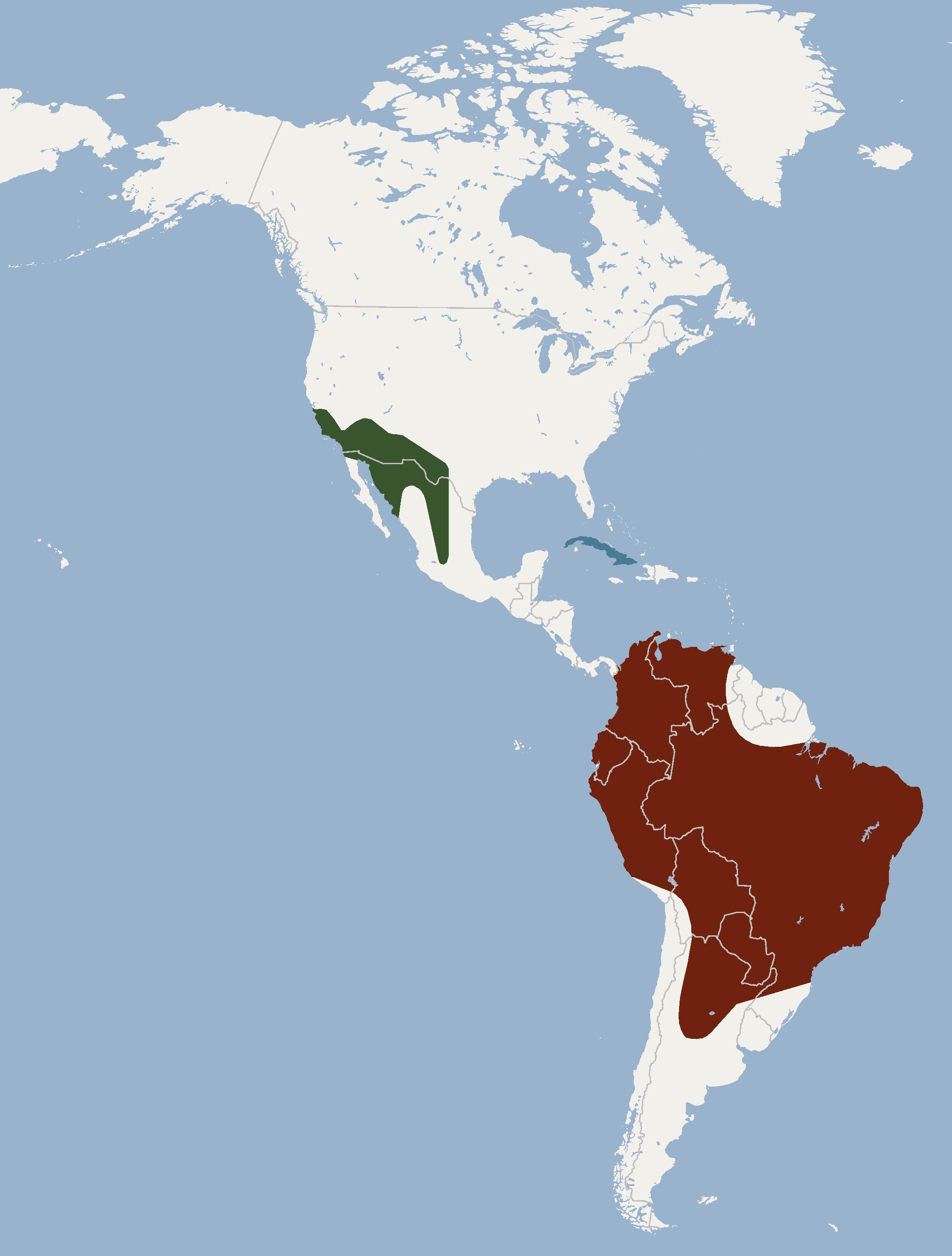 Map of mastiff-bats