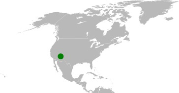 "<span class=""translation_missing"" title=""translation missing: en.medium.untitled.map_image_of, page_name: cavedwelling primrose"">Map Image Of</span>"