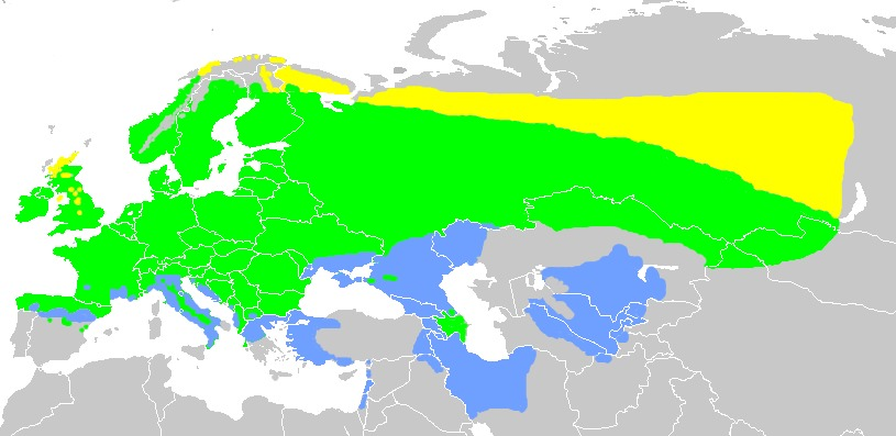 Map of Yellow Bunting