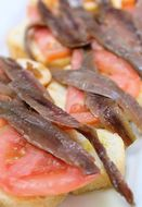 Image of common anchovies