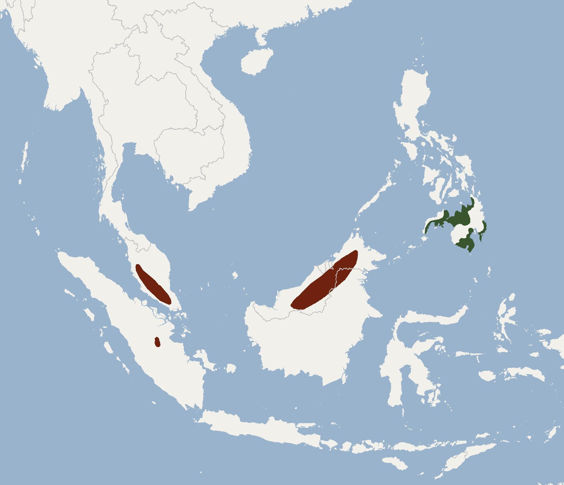 "<span class=""translation_missing"" title=""translation missing: en.medium.untitled.map_image_of, page_name: Mindanao Fruit Bat"">Map Image Of</span>"