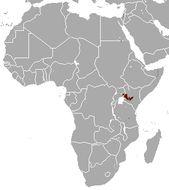 Image of Jackson's Mongoose