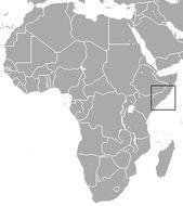Image of Somali Golden Mole