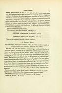 Image of <i>Sallya madagascariensis</i> Boisduval 1833