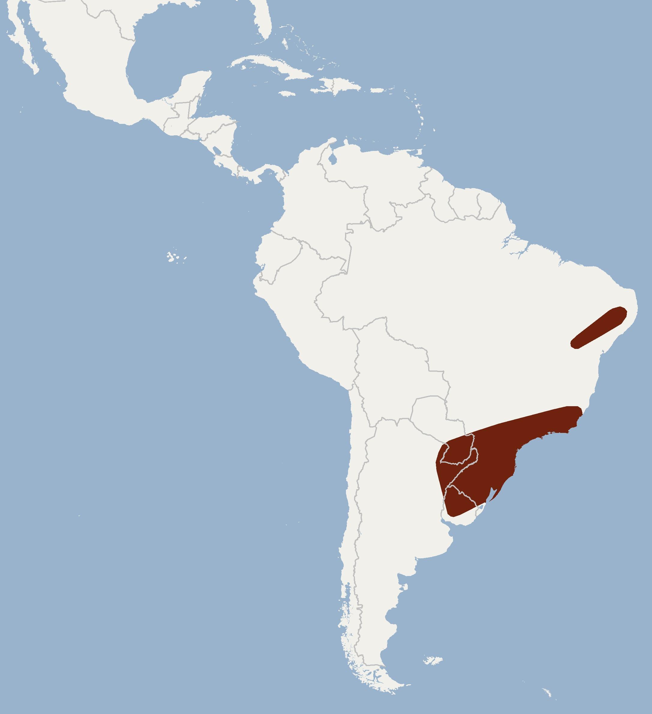 "<span class=""translation_missing"" title=""translation missing: en.medium.untitled.map_image_of, page_name: Red Myotis"">Map Image Of</span>"