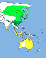 """<span class=""""translation_missing"""" title=""""translation missing: en.medium.untitled.map_image_of, page_name: Pacific Swift"""">Map Image Of</span>"""