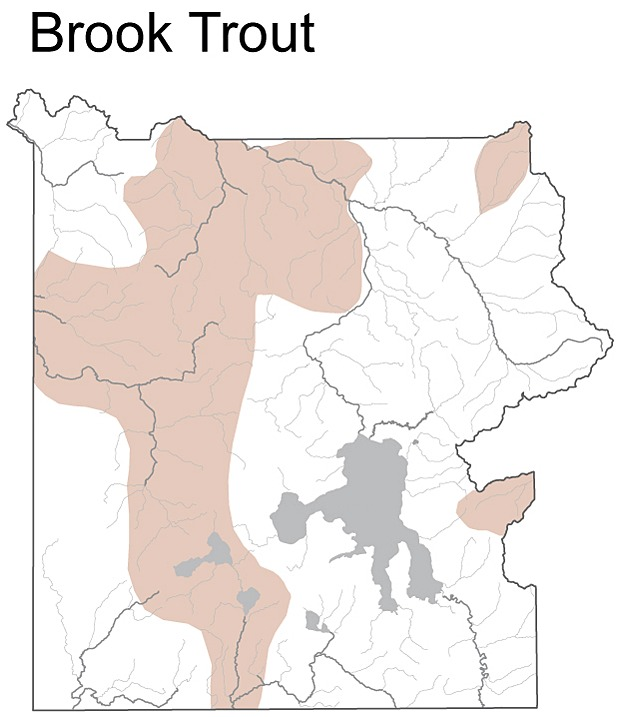 Map of brook trout