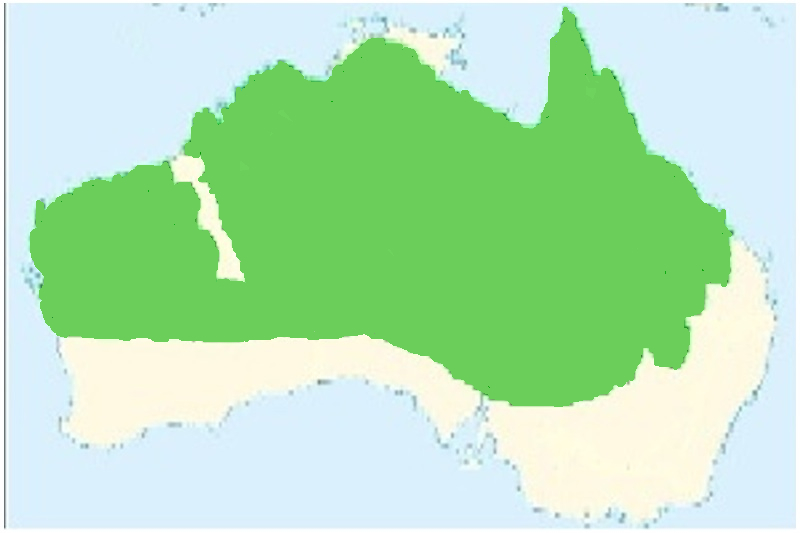 Map of Red-browed Pardalote