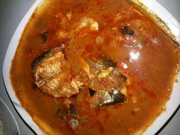 Image of African sea catfish