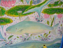 Image of Giant Catfish