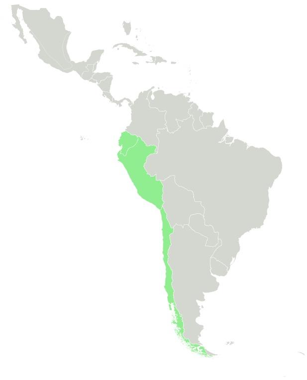 "<span class=""translation_missing"" title=""translation missing: en.medium.untitled.map_image_of, page_name: cherimoya"">Map Image Of</span>"