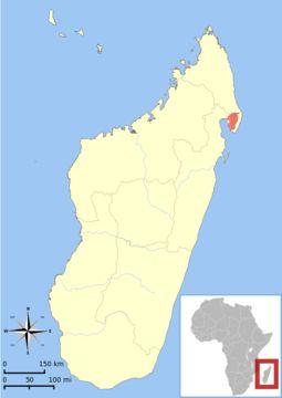 Map of Masoala Sportive Lemur
