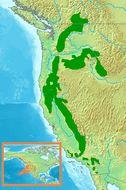 Map of White-headed Woodpecker