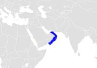 Map of bullhead sharks