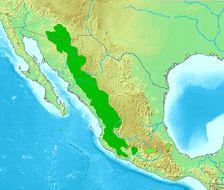 Map of Arizona Woodpecker