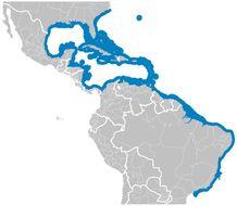 "<span class=""translation_missing"" title=""translation missing: en.medium.untitled.map_image_of, page_name: Donkey Fish"">Map Image Of</span>"