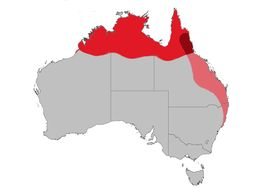Map of fairywrens and relatives