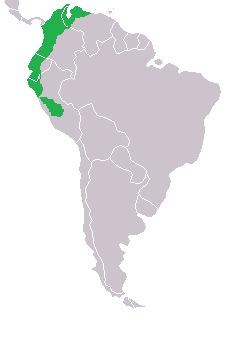 "<span class=""translation_missing"" title=""translation missing: en.medium.untitled.map_image_of, page_name: Golden Tanager"">Map Image Of</span>"