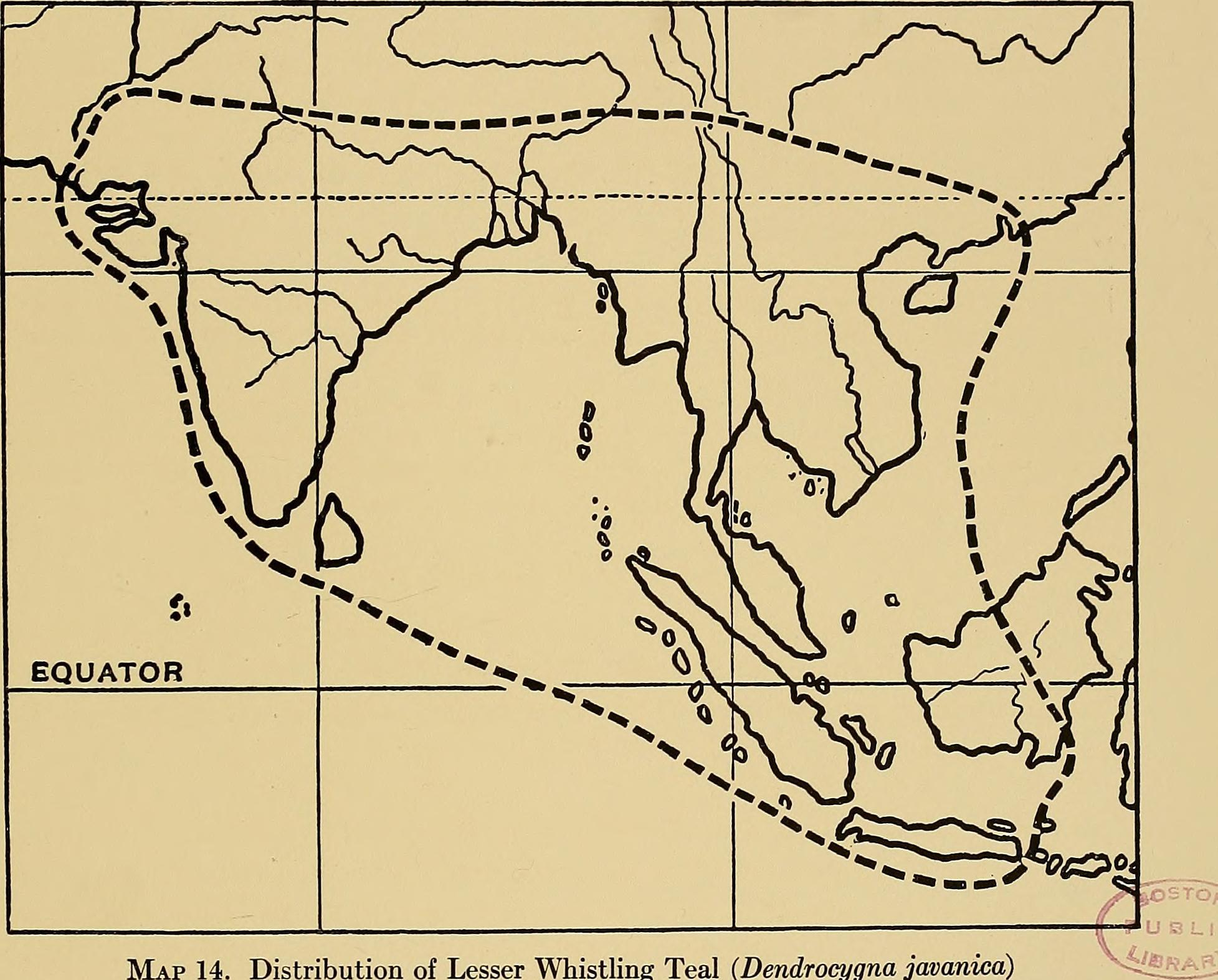 "<span class=""translation_missing"" title=""translation missing: en.medium.untitled.map_image_of, page_name: Lesser Whistling-Duck"">Map Image Of</span>"