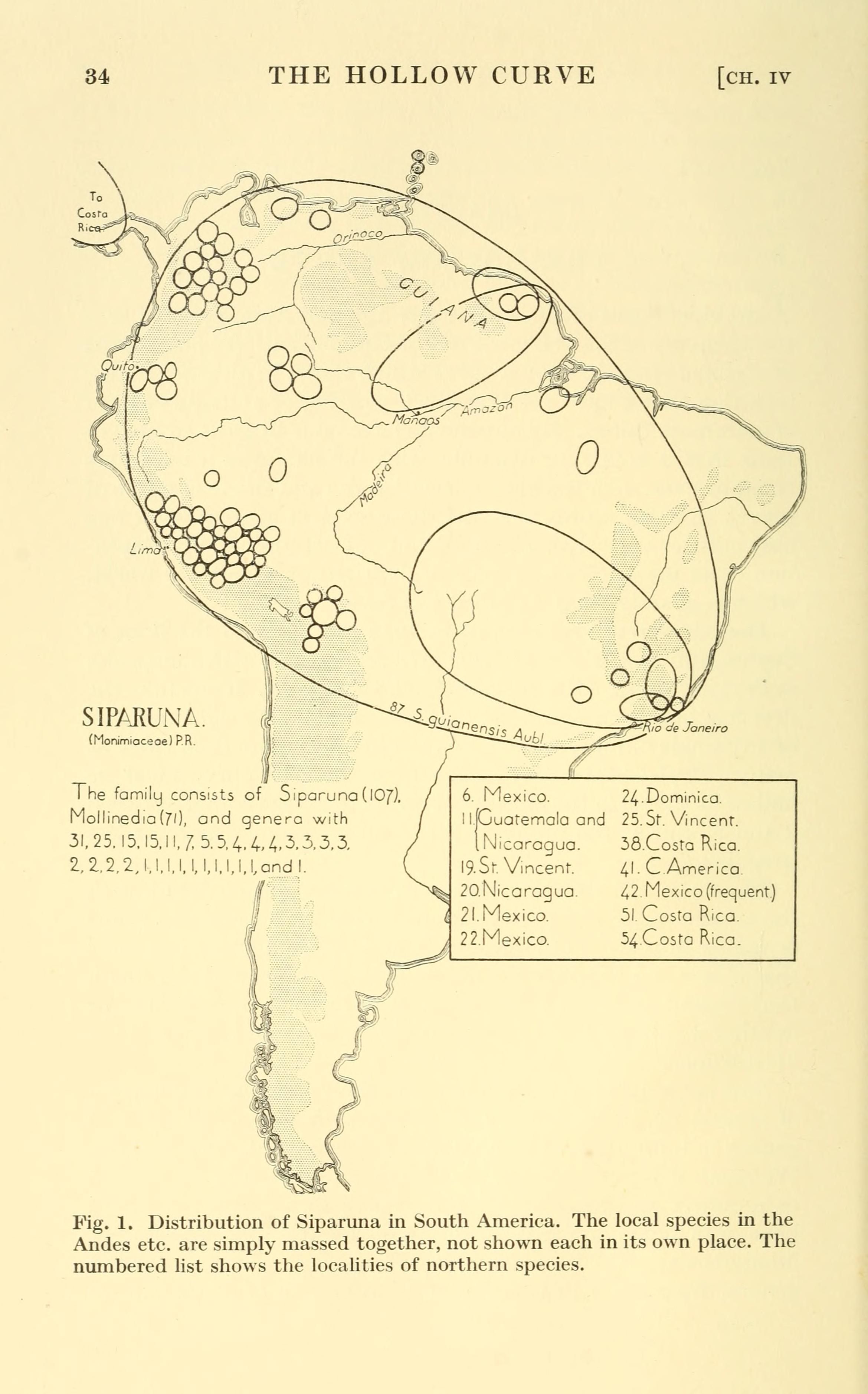 "<span class=""translation_missing"" title=""translation missing: en.medium.untitled.map_image_of, page_name: Siparunaceae"">Map Image Of</span>"
