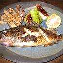 Image of Korean rockfish