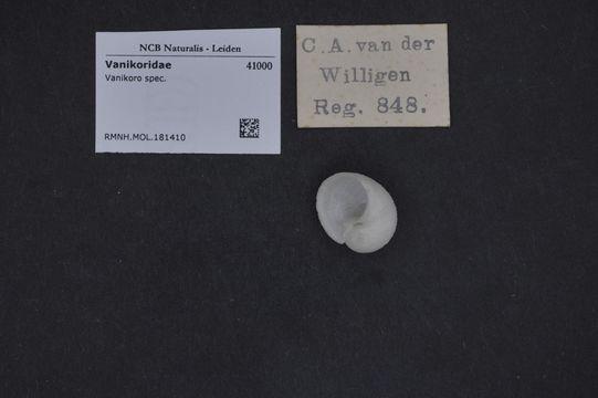 Image of Vanikoro