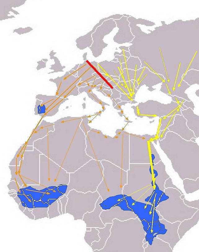 "<span class=""translation_missing"" title=""translation missing: en.medium.untitled.map_image_of, page_name: Black stork"">Map Image Of</span>"