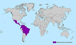 Image of Zika virus