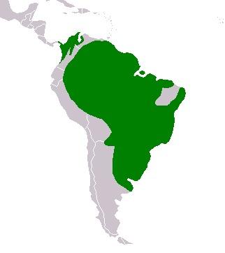Map of Capybara