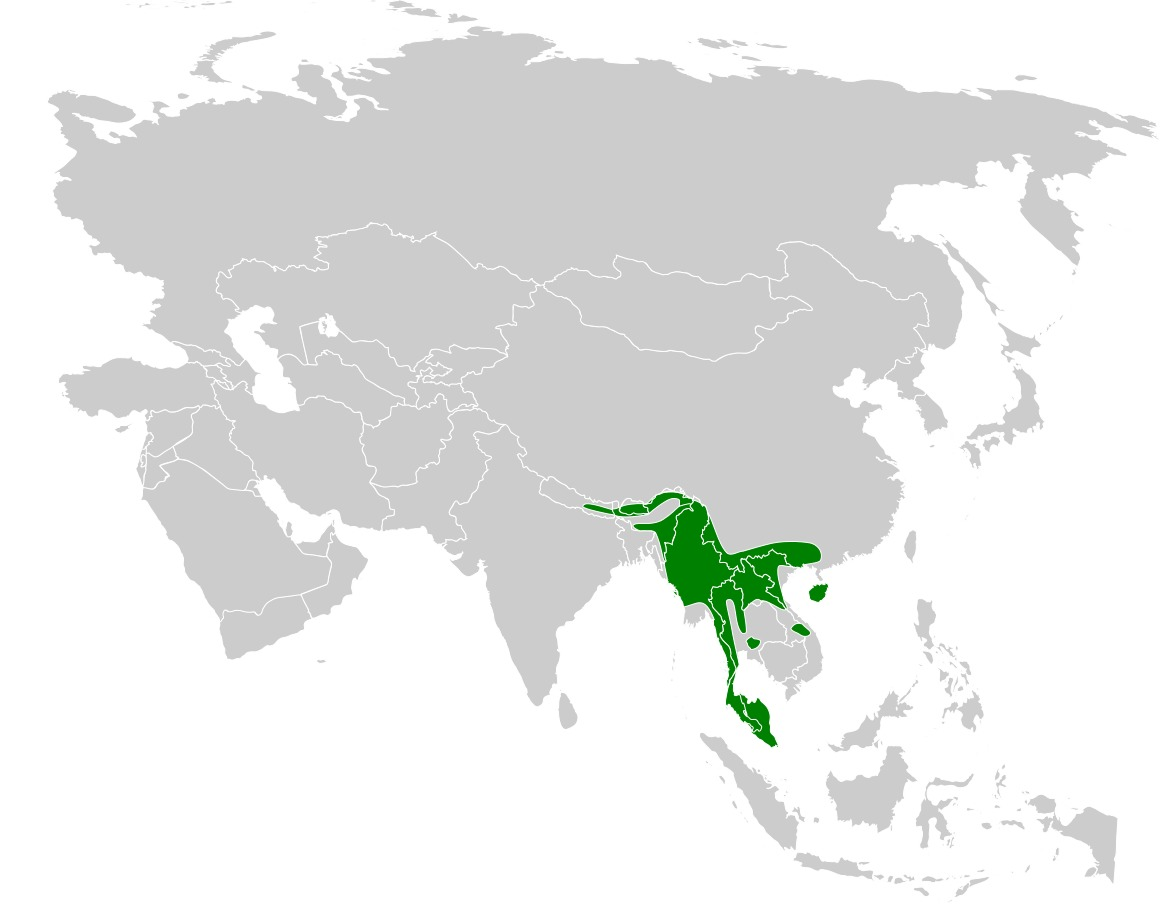 Map of Sultan Tit