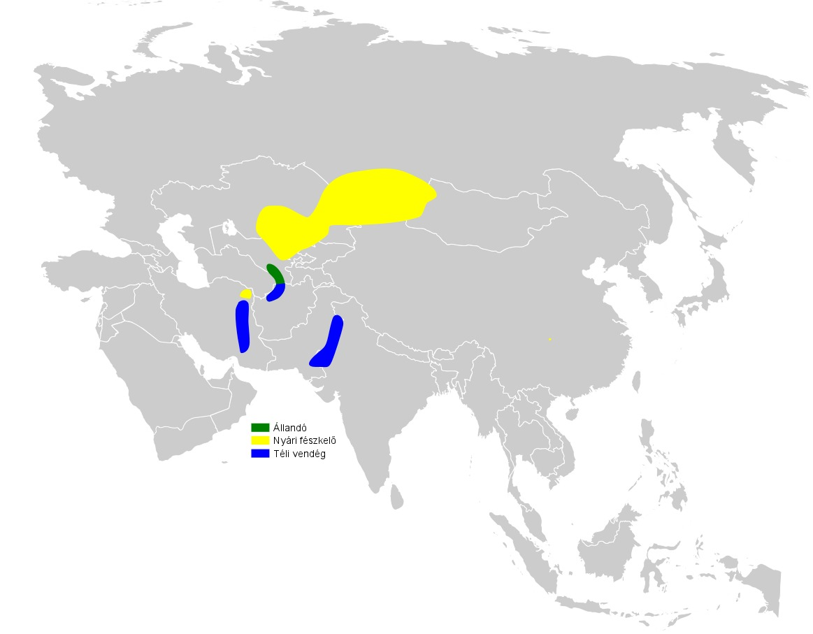 Map of White-crowned Penduline Tit