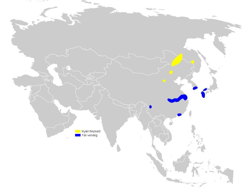 Map of Remiz Jarocki 1819