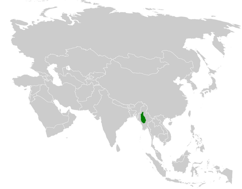 "<span class=""translation_missing"" title=""translation missing: en.medium.untitled.map_image_of, page_name: Burmese Bush Lark"">Map Image Of</span>"