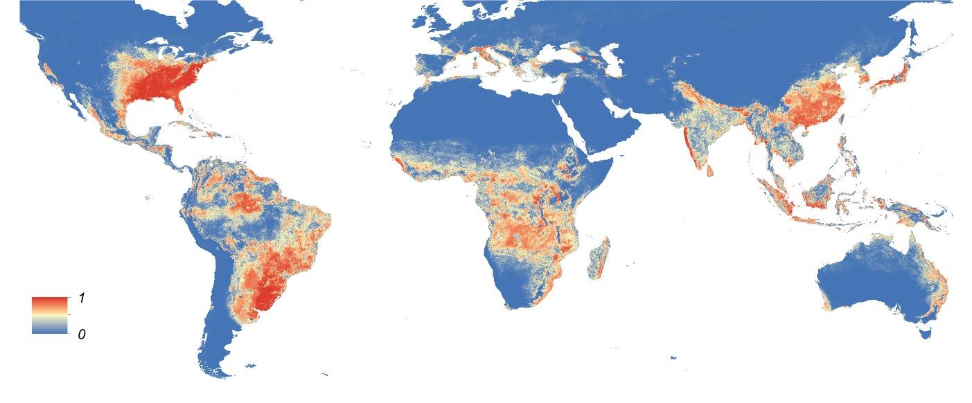 Map of Dengue fever mosquito
