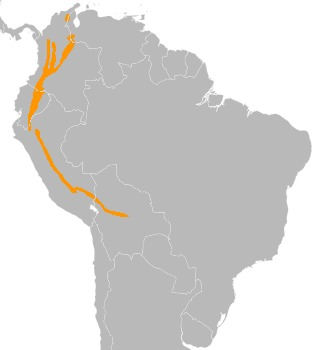 Map of Hooded Mountain-Tanager