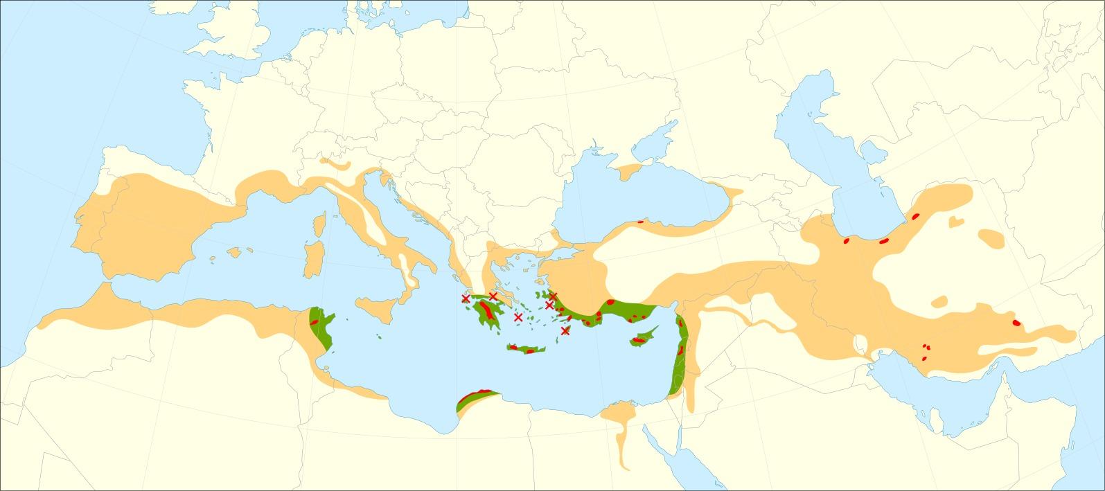 Map of Italian Cypress